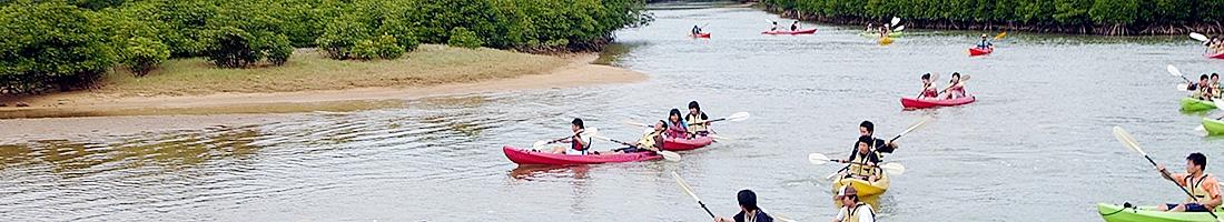 A1 慶佐次川マングローブ観察とカヌー体験(半日コース)